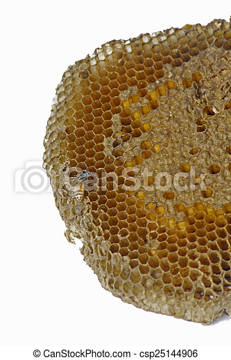 Honeycomb - csp25144906