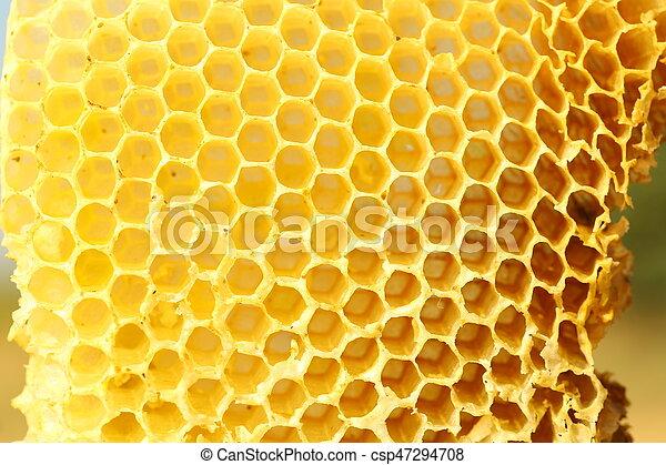 Honeycomb - csp47294708