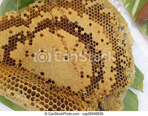 Honeycomb - csp26046839