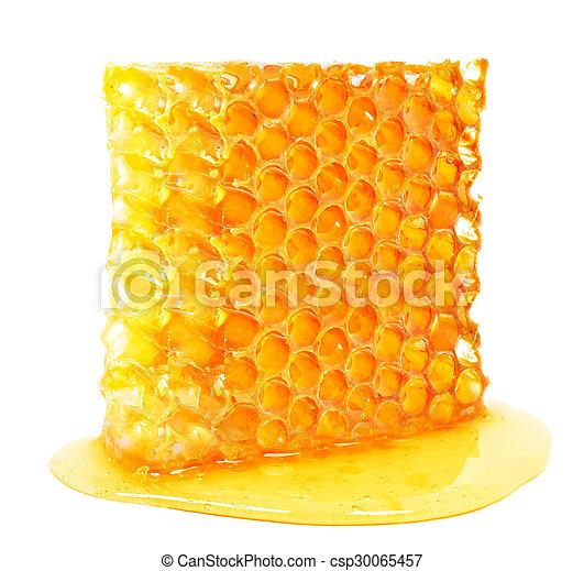Honeycomb - csp30065457