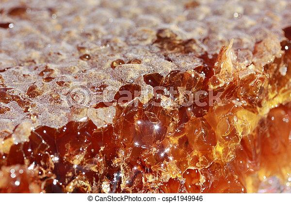 Honeycomb - csp41949946