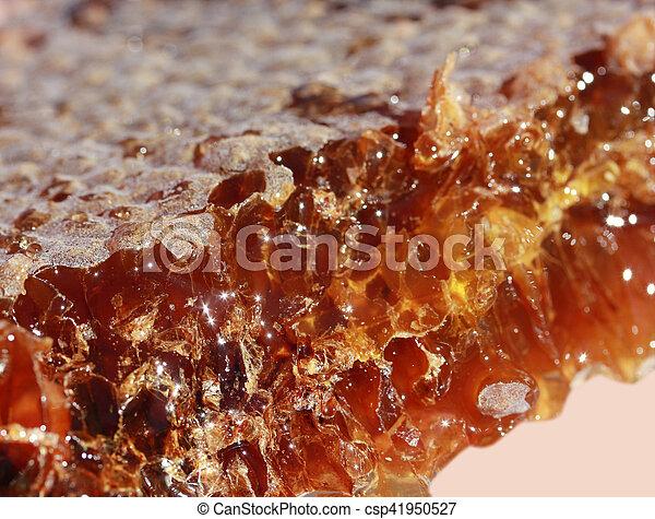 Honeycomb - csp41950527