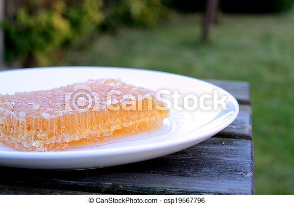 Honeycomb - csp19567796