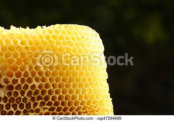 Honeycomb - csp47294699