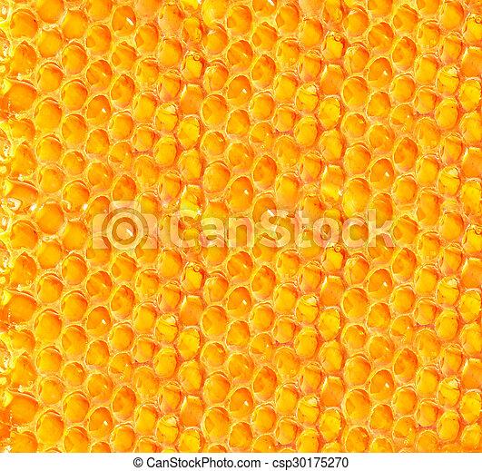 Honeycomb - csp30175270