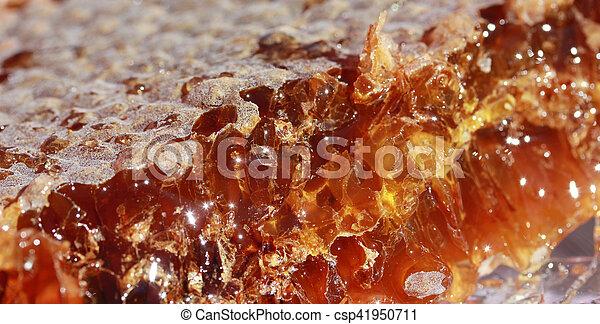 Honeycomb - csp41950711