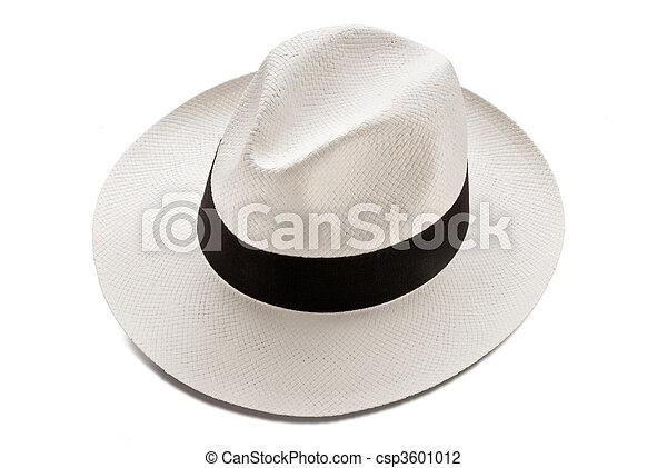 panama hat - csp3601012