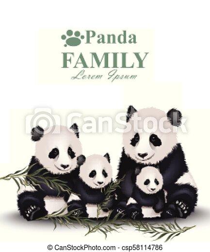 Panda Family Vector Cute Animals Detailed Illustrations Panda