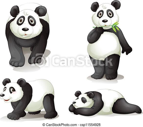 Un panda - csp11554928