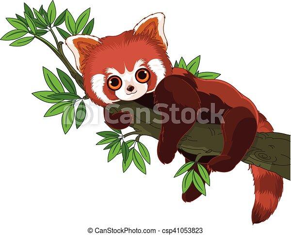 Panda Roja - csp41053823