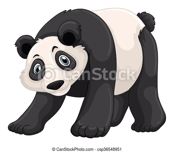 Panda with happy face - csp36548951