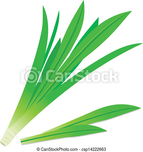 Pandanus Leaves 14222663 further Royalty Free Stock Photos Summer Lettering Colorful Vector Word Image38995298 as well Philippians 4 6 also Galatians 2 20 442959065 besides 50 Most Wonderful Earth Day Wishes Pictures And Images. on beautiful words clipart