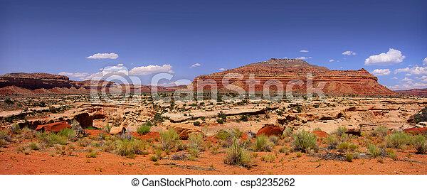 Vista panorámica del desierto de Arizona - csp3235262