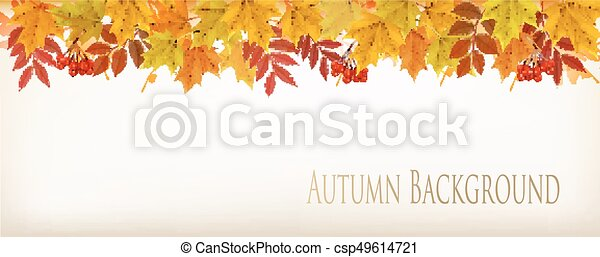 panorama fall autumn colorful leaves background vector