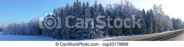 panorama landscape in winter - csp33179869