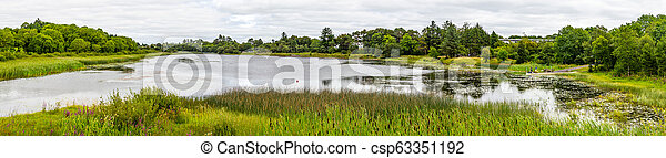 Panorama of a lake with tree reflection in a cloudy day - csp63351192