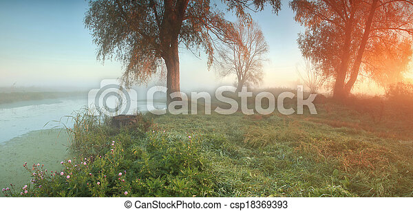 Panorama of misty autumn forest at sunrise - csp18369393