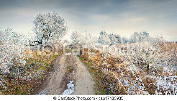 Panorama of the frosty morning in forest - csp17435935