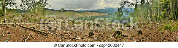 panorama of the mountains - csp42030447
