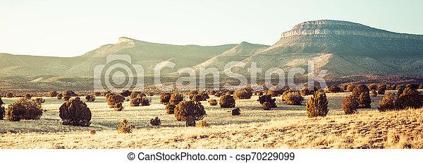 Panorama of the Open Desert - csp70229099