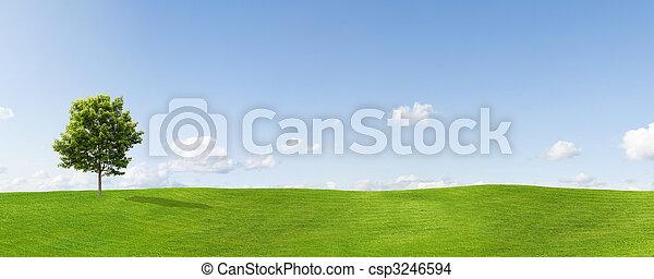 Panorama - csp3246594
