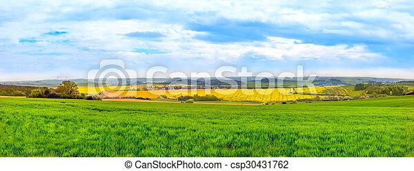 Panorama view of green fields - csp30431762