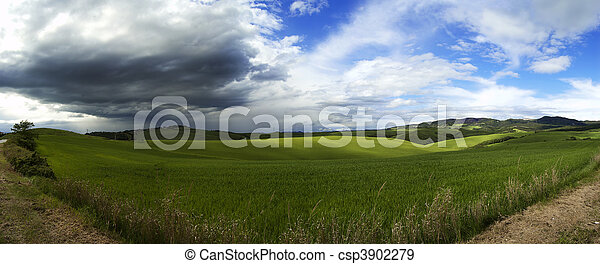 Panoramic fields - csp3902279