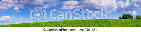 Panoramic landscape of summer meadow - csp3491664