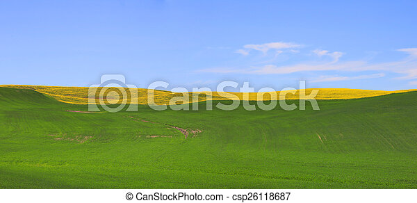 Panoramic view of Meadow - csp26118687