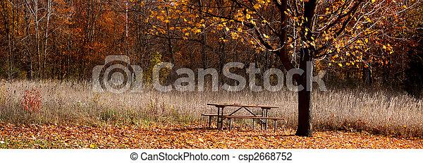 panoramiczny, park, prospekt - csp2668752