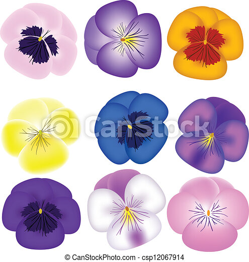 pansies set pansies set pansy clip art border Flower Clip Art