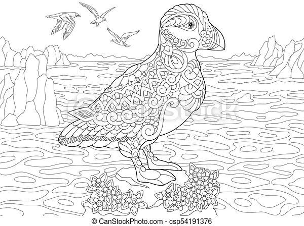 Papageitaucher, vogel, meer. Skizze, färbung, nördlich , elements ...