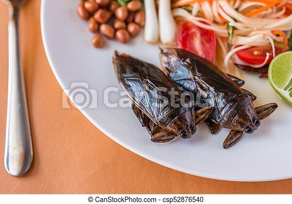 Papaya Salad - csp52876540
