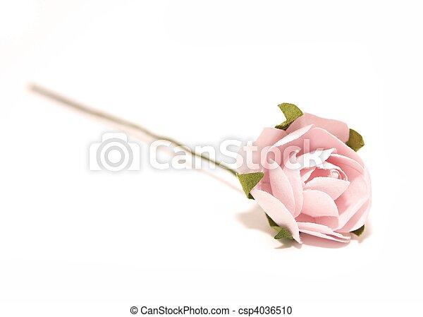 Paper rose - csp4036510