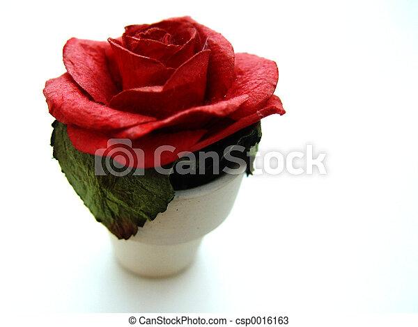 paper rose - csp0016163