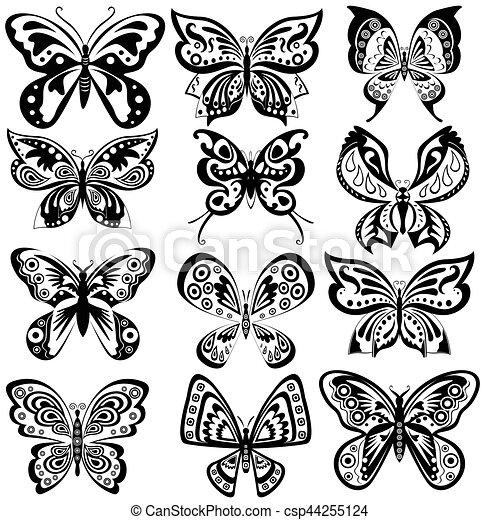Papillon Blanc Ensemble Noir Beau Profil Similarities