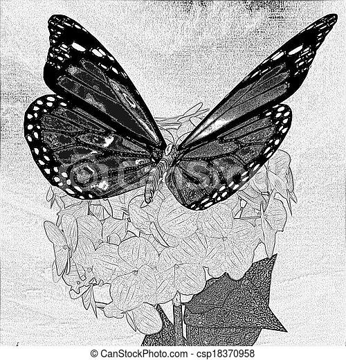 papillon bleistift blume ajisai sch ne zeichnung. Black Bedroom Furniture Sets. Home Design Ideas