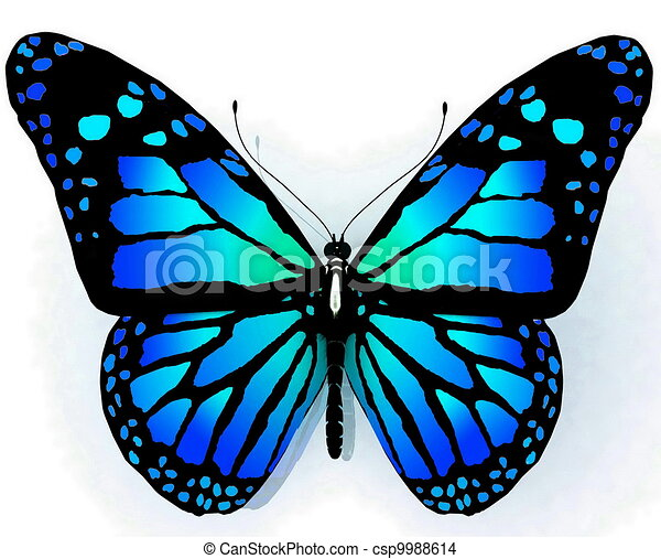 Papillon bleu couleur isol e papillon bleu couleur isol fond blanc - Papillon dessin couleur ...