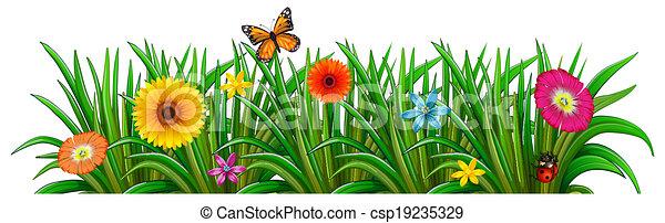 Papillon, coccinelle, jardin, fleurs, fleurir, frais. Papillon ...