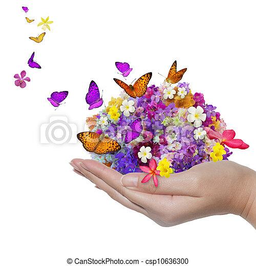 papillon, fleur, renverser, beaucoup, tient, main, fleurs - csp10636300