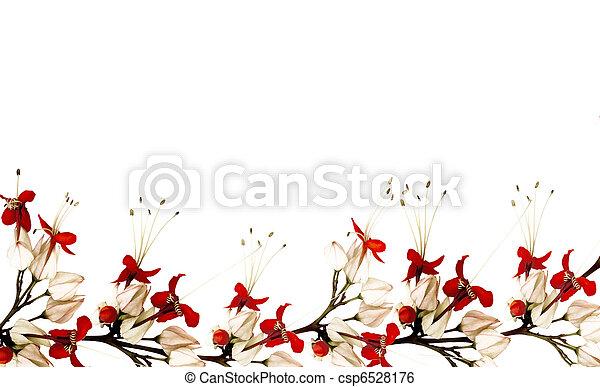 papillon, fleur, rouge noir - csp6528176