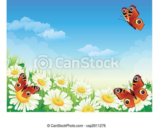 papillon, fleurs - csp2611276