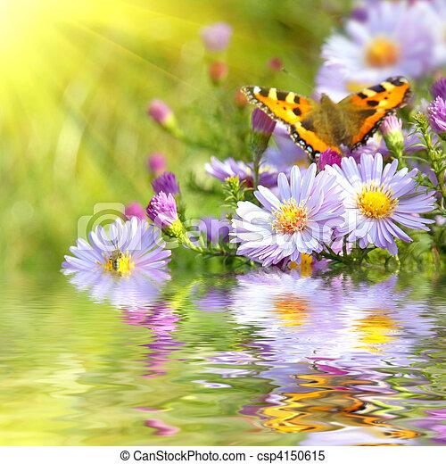papillon, fleurs, reflet, deux - csp4150615