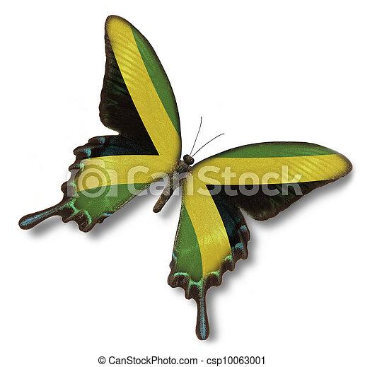 papillon, jamaica läßt - csp10063001