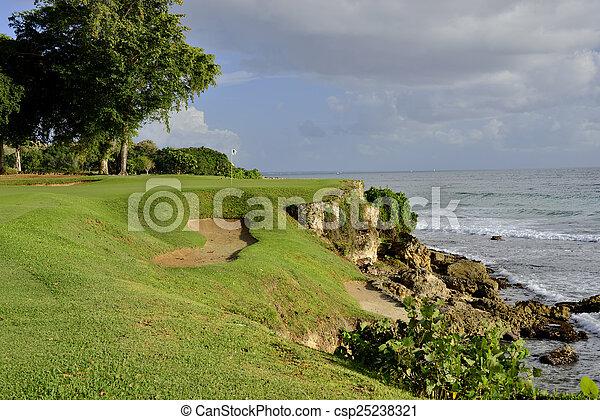 Par 3 on a Cliff - csp25238321