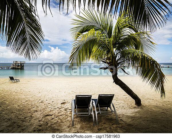 paraíso tropical - csp17581963