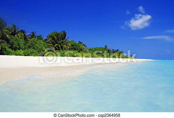 El paraíso tropical - csp2364958