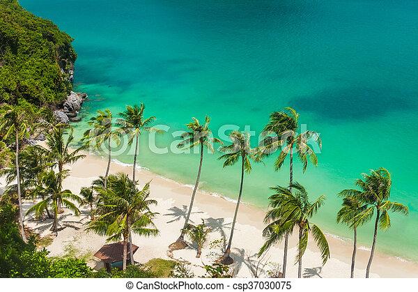 Paradise beach on tropical island. Ang Thong National Marine Park. Top view - csp37030075