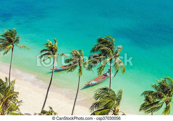 Paradise beach on tropical island. Top view - csp37030056
