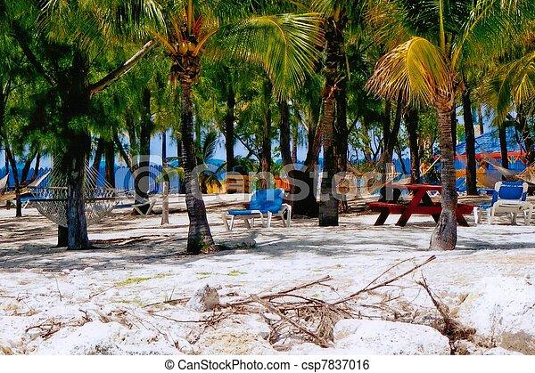 Paradise - csp7837016